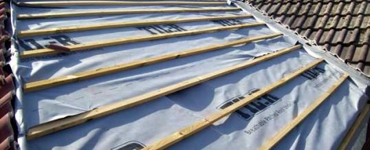 Newly Cut Roof Batons